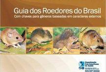 Livros SBMz, Mamíferos Brasileiros / A SBMz financia a publicação de livros acerca de mamíferos brasileiros para ser distribuído gratuitamente aos sócios.  Doações específicas para este fim podem ser feitas via contato com a diretoria SBMz através do email diretoria.sbmz@gmail.com.