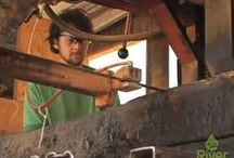 Around Our Mill / A look at the place, and the people, who make Whole Log Lumber work.