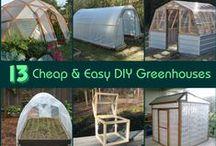 Melegházak - Greenhouses