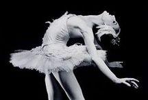 Ballet / by Tiffany Vela