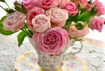 { Stop and Smell the ROSES!!}  / I love ROSES!! / by Annette Kessler
