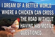Funnies / Poultry funnies.