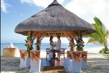 Wedding by the beach / Celebrate your lifetime event , by the beach . A perfect Ceremony by the Beach .