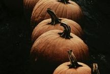 Autumn: Pumpkin Love / I love everything about Pumpkins. So here's a collection of recipes, decoration ideas and everything else to do with them