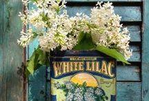 Crafts: Wreath & Floral Arrangements