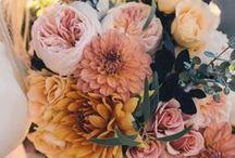 Inspiración: Flores