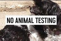 NO ANIMAL TESTING. EVER.