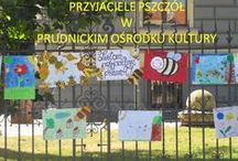 Prudnicki Ośrodek Kurltury Akademie Przyjaciół Pszczół