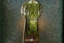 My Journey / by Allison Douglass