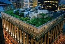 Roof Top Gardens / Lutz Roofing | Commercial Roofing | Michigan | Green Roofs | Live Roofs | Roof Top Gardens | Energy