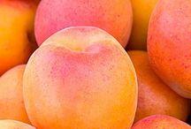 3, rue de l'Abricot / Abricot | Apricot | couleurs