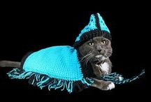 Pet Clothes and Blankets from ADKArtsBoutique on Etsy / Pet Sweaters, Hoodies, Ponchos, Blankets and more!!
