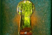 Portals  / by Diane Marshall