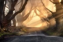 ~•♥•~Roads, Bridges and Walkways~•♥•~ / No pin limits if you follow.... / by •♥•Sally Williams•♥•