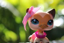 Littlest Pet Shop / Everyone needs to calm down and love LPS. And here you will find random pics of Littlest Pet Shops.