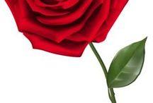 MANDAR ROSAS / Levantarte por la mañana y recibir una rosa te puede alegrar todo el día....imaginaté mandarla