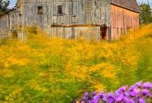 Inspiration / What makes rustic rustic