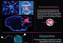 Infographics & Infoposters