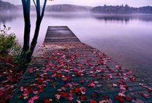 autumn / Herbst / jesień