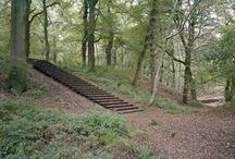 paisaje - escaleras