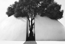 Architectural blessings / New and old fashion architectural creativity