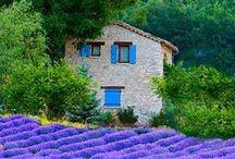 Prowansja/Provence / Widoki, smaki i wystrój wnętrz Prowansji