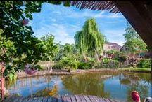 Vakantiehuizen met zwembad / Vakantiehuizen en groepsaccommodaties met zwembad. Voor het ultieme vakantiegevoel!