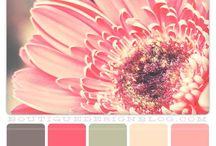 Colour combinations..