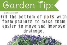 Landscaping: Keep it Beautiful and Let it grow! / Beautiful landscaping and Tips & Tricks for tending your garden.