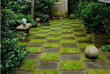 Moss & Concrete