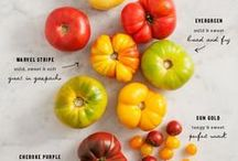 All Things Tomatoes