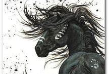 koně / koní