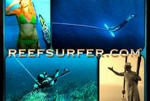 REEF / the premium surf travel brand