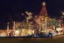 Happy Holidays from MiraBay / Spread Holiday Cheer