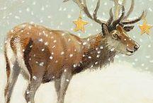 Feestdagen / Kerstmis, Nieuwjaarsdag, Oudjaarsavond, Pasen, Koningsdag etc