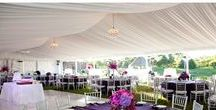 Tent Drapery / A great way to jazz up a celebration is lining the entire top of your venue with fabric! In addition to creating a breathtakingly memorable look,  tent liners and draping open up the space to make it appear larger than it actually is.