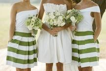 Light Green Color Scheme