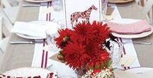Poppy Red Color Scheme