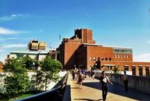 Beautiful U Campus / by University of Minnesota
