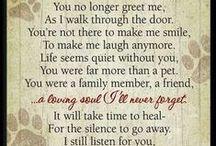 Sayings that Define my Life / by Bridget Borsa