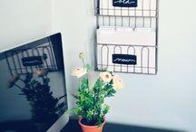 Organization/Cleaning Tips / by Lauren Elizabeth