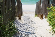 Beach and Ocean.... / by Sharon Perkins