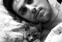 Kittens / by April Mazak