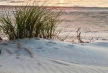 Seaside / Nothing is as peaceful as being by the Sea. / by Elizabeth Morneault
