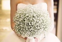 Baby Breath Wedding / When Baby Breath....