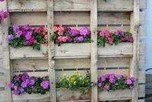 Home garden ideas / so easy to do