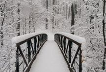 Winter Wonderland in the Snow / Living in a sub-tropical climate means snow is something we have to travel to experience!
