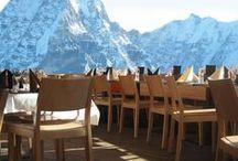 Scaune pentru pub și restaurant / Portofoliul Chairry de scaune pentru pub-uri, localuri, restaurante, cofetării etc.