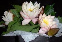 Vase Arrangements / Arrangements created in vases