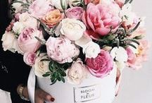 •Flowers• / De lente geeft ons altijd weer nieuwe inspiratie ❤️ en ook komen de warme zomerdagen en daarom een bord over bloemen